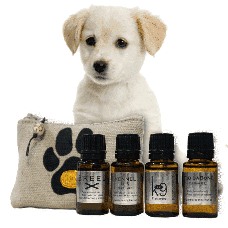 Furfumes Gift Set for Pets